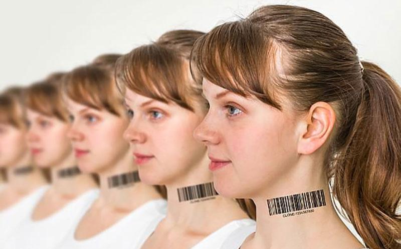 هل يمكن صناعة إنسان نسخة طبق الأصل من إنسان أخر ؟ مصر فايف